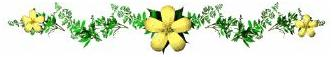 http://www.indianrailways.gov.in/railwayboard/uploads/directorate/rail_sport_pro/federation%20images/webr_yellow_flowers.jpg